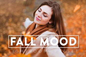 10 MOODY FALL Lightroom Preset 5532981 5