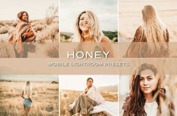 5 Golden Lightroom Presets 5701412 4