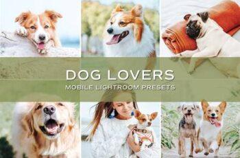 5 Dog Blogger Lightroom Presets 5701593 2