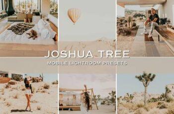 5 Joshua Tree Lightroom Presets 5701728 6