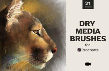 Dry Media Brushes - Procreate 5488435 3
