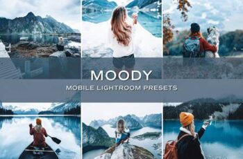 5 Moody Lightroom Presets 5701753 3