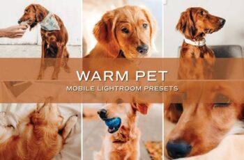 5 Warm Pet Lightroom Presets 5701723 7