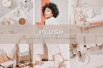 5 Blush Lightroom Presets 5701707 7