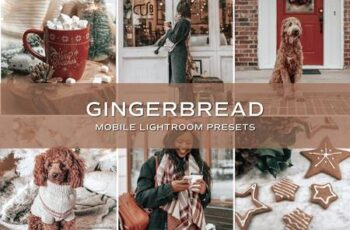 5 Gingerbread Lightroom Presets 5701797 7