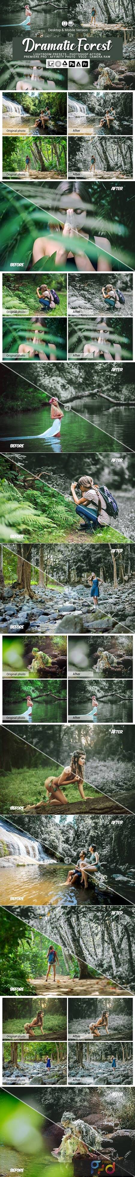 Dramatic Forest Presets 5689538 1