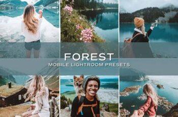 5 Forest Lightroom Presets 5699079 4