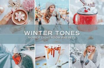 5 Winter Tones Lightroom Presets 5698860 6