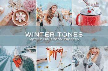 5 Winter Tones Lightroom Presets 5698860 3