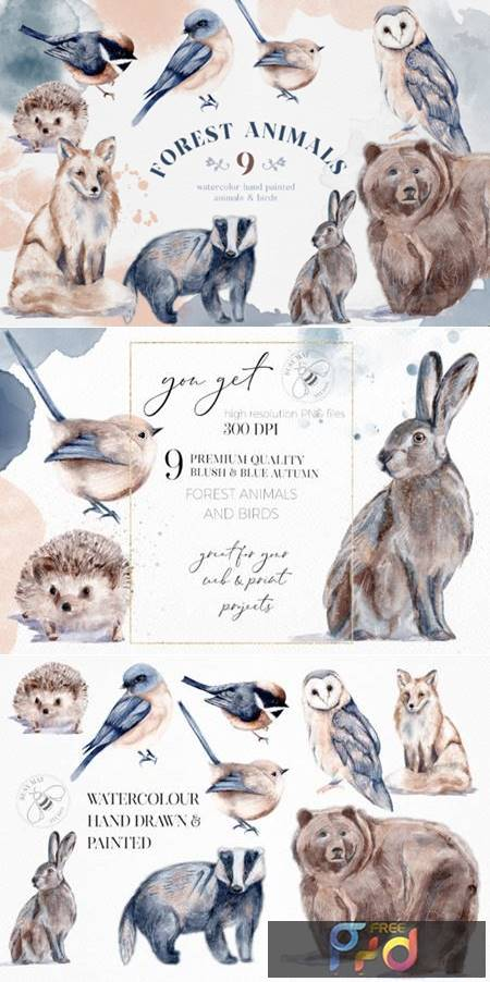 Watercolor Forest Animals Birds Owl 6945981 1
