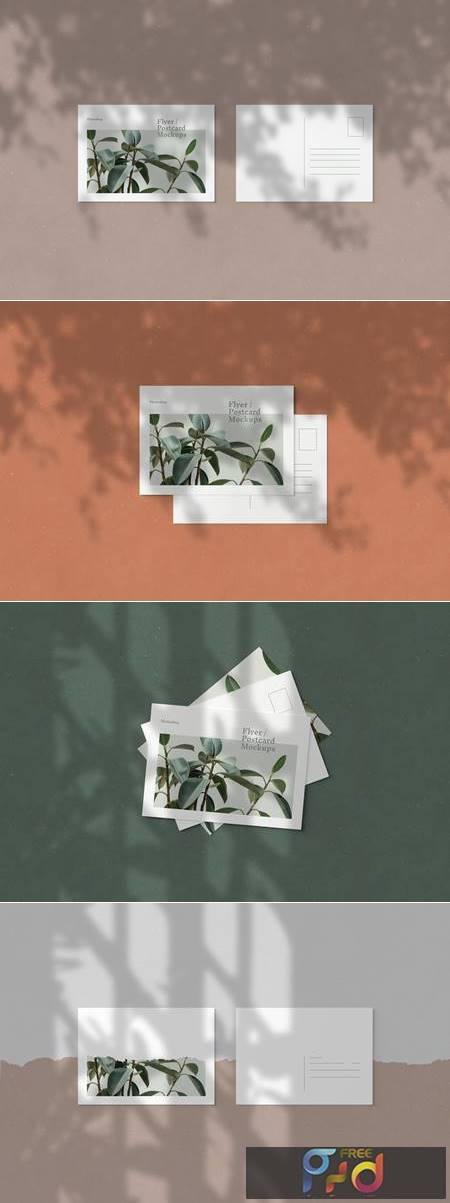 Flyer - Postcard Mockups - 5723458 1
