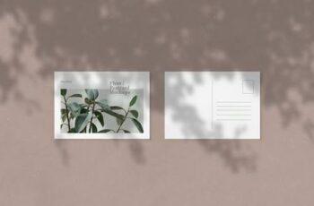 Flyer - Postcard Mockups - 5723458 16