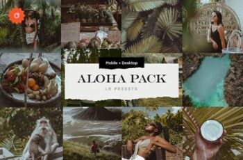 Aloha – 8 Lightroom Presets Pack 5033754 1
