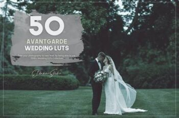 50 Avantgarde Wedding LUTs Pack JGSWJVT 5