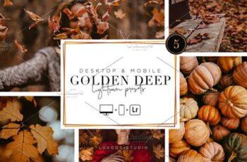 GOLDEN DEEP - Lightroom Presets 5200047 6