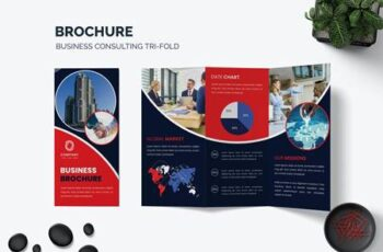 Trifold Brochure Business 4