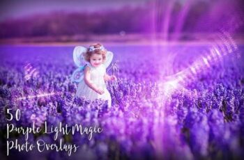 50 Purple Light Magic Photo Overlays BNFAP3R 3