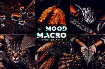 Moody Macro Photoshop Action 30124025 4