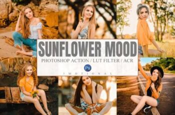 Sunflower Mood Photoshop Actions, LUT 8155818 3