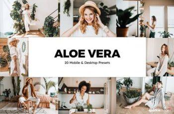 20 Aloe Vera Lightroom Presets & LUTs 5861842 16