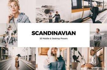 20 Scandinavian Lightroom Presets & LUTs 5861168 14
