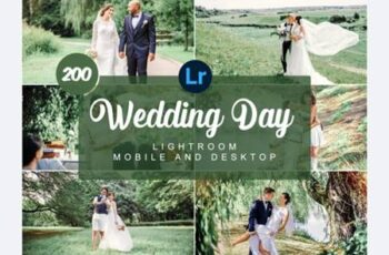 Wedding Day Mobile and Desktop PRESETS 7477325 9