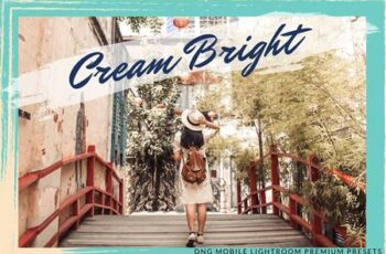 CREAMY BRIGHT MOBILE LIGHTROOM 5758584 7