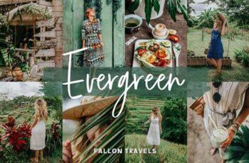 Evergreen Lightroom Mobile Presets 5017153 6