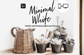 Minimal White Lightroom Presets 5845081 2
