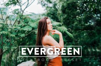 10 Evergreen Lightroom Presets VXYTY8V 7