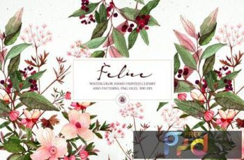 Felice - watercolor floral set EMMZGY7 16