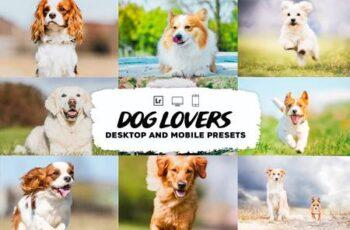 Dog Lovers Lightroom Presets 5953302 7