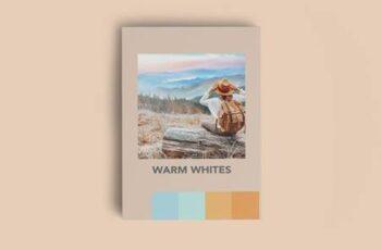 WARM WHITES FILM MOBILE LIGHTROOM PR 5924721 3
