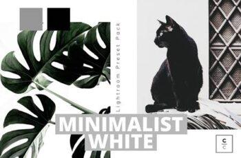 Minimalist White Lightroom Preset 5978148 3
