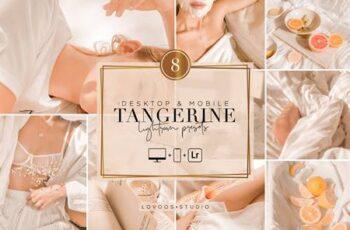 TANGERINE - Lightroom Presets 5954720 6
