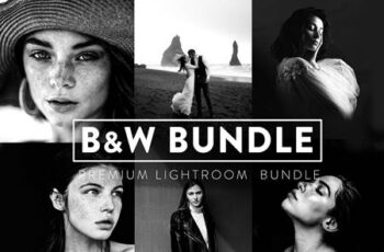 60 BLACK and WHITE Bundle Lightroom 6043136 7