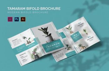 Tamaram - Bifold Brochure T4ESJJY 3