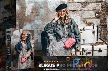 PRO Presets - V 08 - Photoshop & Lightroom 22E6NDL 13