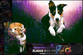 PRO Presets - V 04 - Photoshop & Lightroom AY9CEGV 10