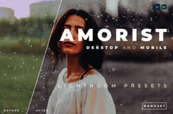 Amorist Desktop and Mobile Lightroom Preset YWABYTT 6