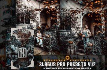 PRO Presets - V 17 - Photoshop & Lightroom MCVF25V 4