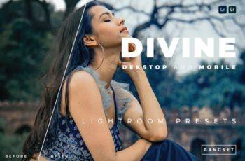 Divine Desktop and Mobile Lightroom Preset B5B6NSR 5