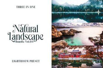 Lightroom Preset - Natural Landscape Vol.04 SSFLWTV 3