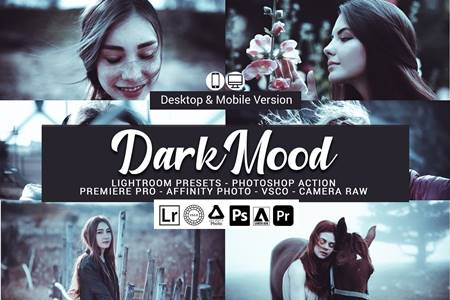 Dark Mood Lightroom Presets 5157026 15