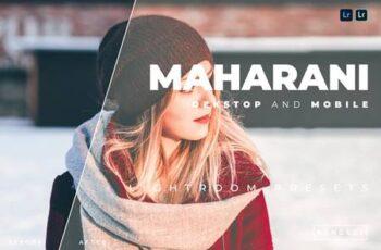 Maharani Desktop and Mobile Lightroom Preset 92SLT6S 4