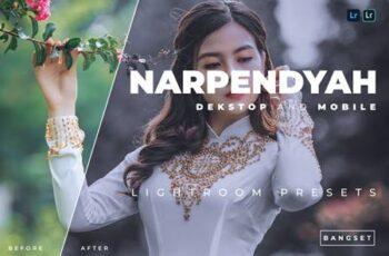 Narpendyah Desktop and Mobile Lightroom Preset FLMKS9P 6