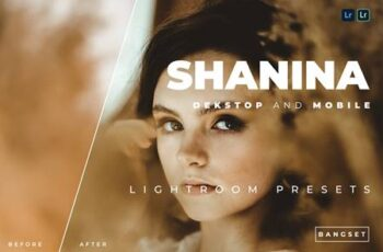 Shanina Desktop and Mobile Lightroom Preset XHSVQXA 7