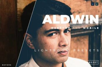 Aldwin Desktop and Mobile Lightroom Preset QXK26FQ 2