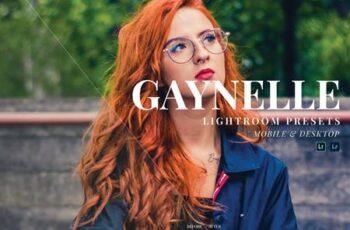 Gaynelle Mobile and Desktop Lightroom Presets NQBX5QL 6