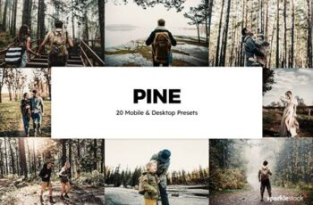 20 Pine Lightroom Presets & LUTs EQFZRHV 2